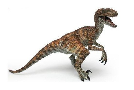 Velociraptor extinct animals - Raptor dinosaure ...