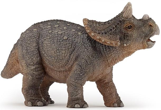 Triceratops | Extinct ...