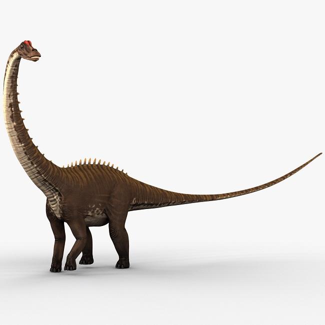 Diplodocus | Extinct A...