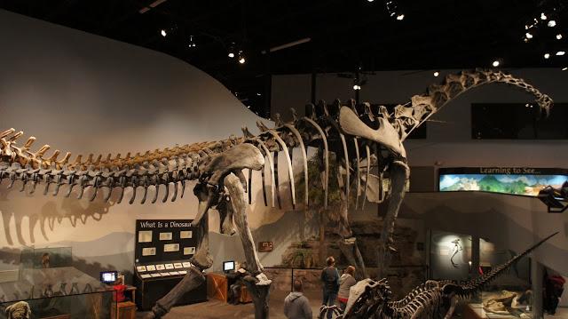 Ultrasaurus | Extinct ...