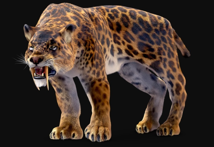 extinct animals species extinction smilodon cat america saber toothed definition north extinctanimals largest south