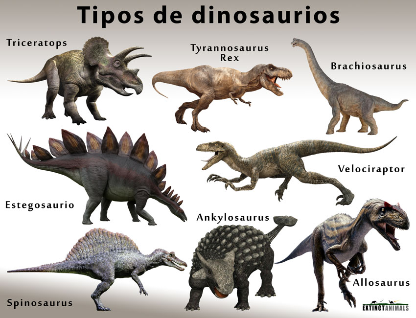 Dinosaurios Nombres De Los Diferentes Tipos Cuando Y Como Se Extinguieron Para que los niños lo puedan aprender. dinosaurios nombres de los diferentes